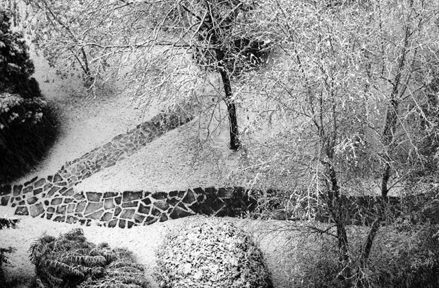 Was sollte man tun, um auch im Winter einen schönen Garten zu haben?