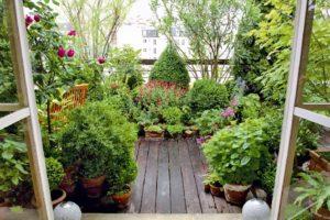 Nützliche Tipps für die Gestaltung einer blumenreichen Terrasse