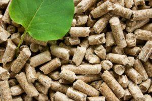 Hochwertiges (und umweltfreundliches) Pellet: Wie kann man es erkennen?